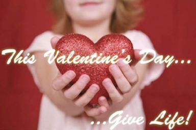 Organ Donor Day